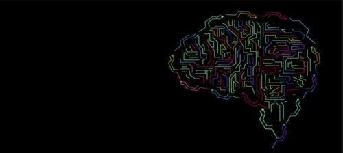 Le concept d'intelligence et son évolution