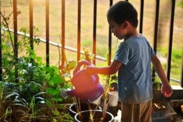 L'éducation environnementale des enfants