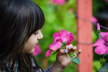 Les classes de botanique pour les enfants