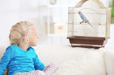 Une petite fille avec un perroquet.