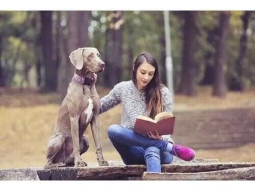 La thérapie animale chez une adolescente.