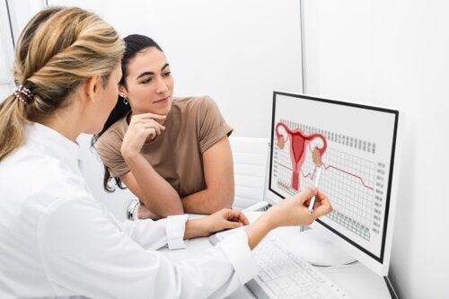 Quel est le processus de l'ovulation ?