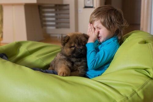 5 recommandations pour les enfants allergiques aux animaux