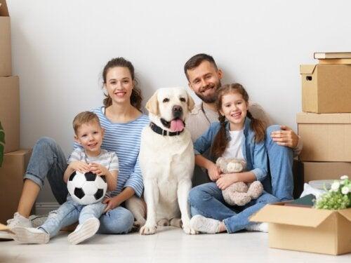 Comment préparer votre enfant au déménagement