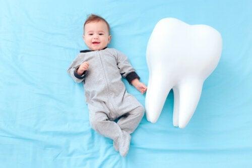 Quelques curiosités sur les dents de lait