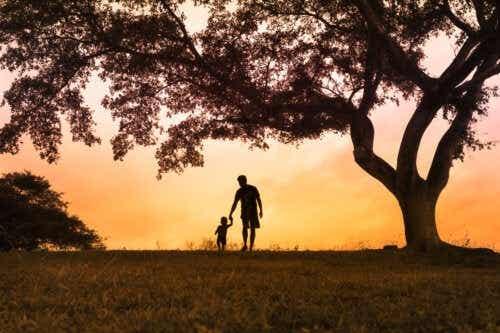 L'arbre des émotions : ce qu'il faut savoir